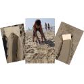 Speelbelovend zandkammen set van 5 designs