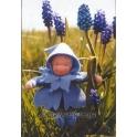 bloemenkindje blauwe druif