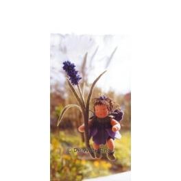 bloemenkindje lavendel